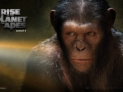 rise of the planet of the apes wallpaper1 1680